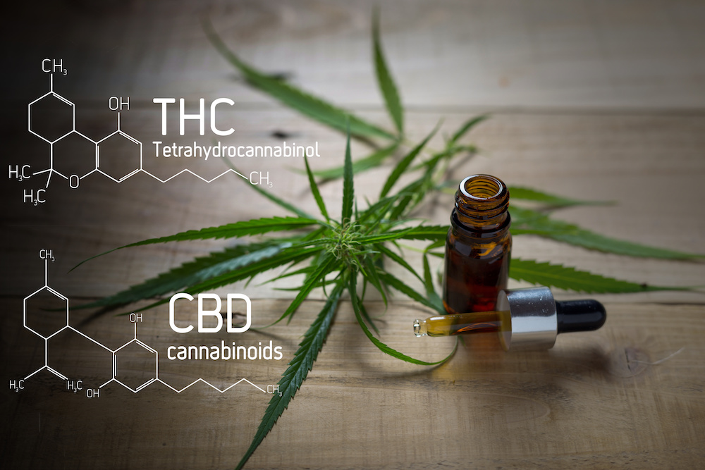 What Is Delta-8 THC and How Is It Different from CBD? - CBD Articles - Mindful Medicinals Sarasota