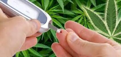CBD and Diabetes